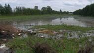 si-ott-farm-flood[1].jpg